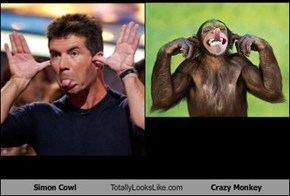 Simon Cowl Totally Looks Like Crazy Monkey