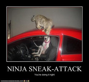 NINJA SNEAK-ATTACK