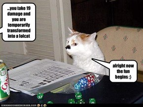 ...you take 19 damage and you are temporarily transformed into a lolcat
