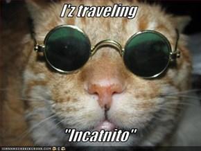 "I'z traveling  ""Incatnito"""