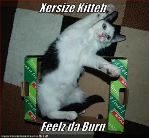 Xersize Kitteh   Feelz da Burn