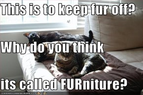 This is to keep fur off? Why do you think its called FURniture?