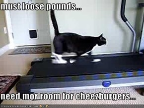 must loose pounds...  need mor room for cheezburgers...