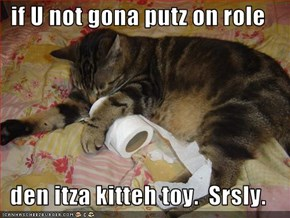if U not gona putz on role  den itza kitteh toy.  Srsly.