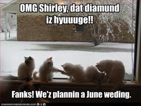 OMG Shirley, dat diamund iz hyuuge!!