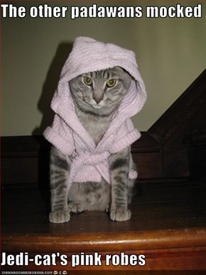 The other padawans mocked  Jedi-cat's pink robes