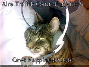 Aire Traffik Controller Kitteh  Cawt Napping on Job!