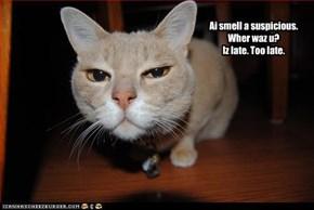 Ai smell a suspicious. Wher waz u? Iz late. Too late.