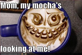Mom, my mocha's   looking at me!