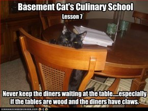 Basement Cat's Culinary School, Lesson 7