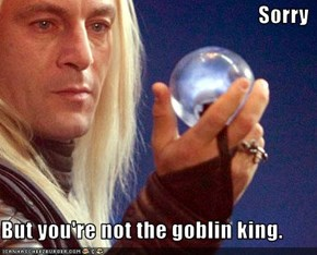 Sorry   But you're not the goblin king.