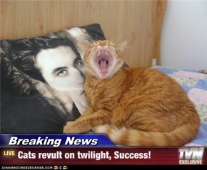 Breaking News - Cats revult on twilight, Success!