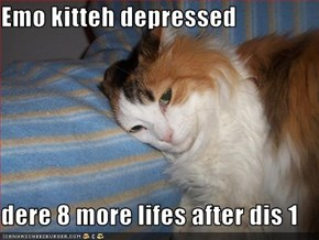 Emo kitteh depressed   dere 8 more lifes after dis 1