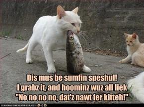 Dis mus be sumfin speshul!