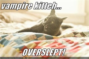 vampire kitteh...  OVERSLEPT!
