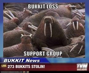 BUKKIT News - 273 BUKKITS STOLIN!