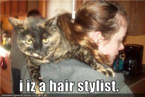 i iz a hair stylist.