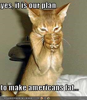 yes, it is our plan  to make americans fat...