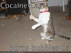 Cocaine Cat      burps bubbles D: