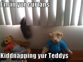 I'm in yur curtans  Kiddnapping yur Teddys