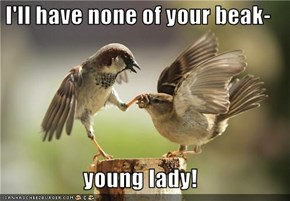 I'll have none of your beak-  young lady!