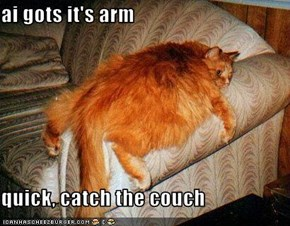 ai gots it's arm  quick, catch the couch