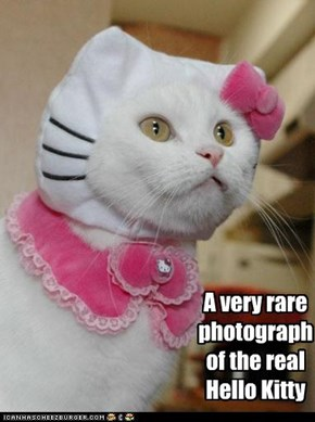 A very rare  photograph  of the real  Hello Kitty