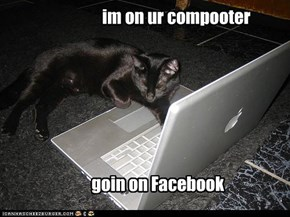 im on ur compooter