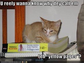 "U reely wanna know why dey call em  teh ""yellow pages""?"