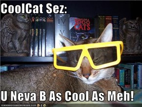CoolCat Sez:  U Neva B As Cool As Meh!
