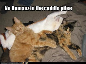 No Humanz in the cuddle pilee