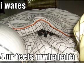 i wates  4 ur feets mwhahaha