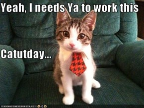 Yeah, I needs Ya to work this  Catutday...