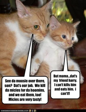 See da mousie over there, son?  Dat's our job.  We kill da micies for da hoomins, and we eat them, too! Micies are very tasty!