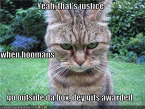 Yeah, that's justice when hoomans  go outside da box, dey gits awarded