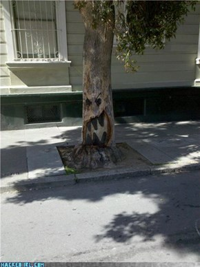 Angry Tree!
