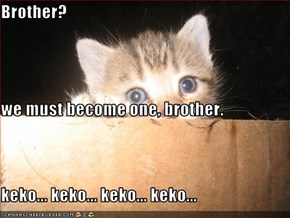 Brother?  we must become one, brother. keko... keko... keko... keko...