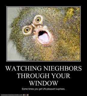 WATCHING NIEGHBORS THROUGH YOUR WINDOW