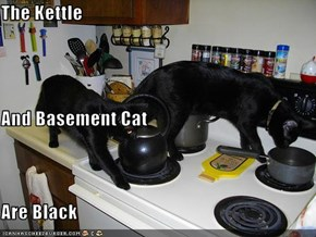 The Kettle  And Basement Cat Are Black