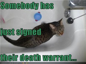 Somebody has just signed their death warrant...
