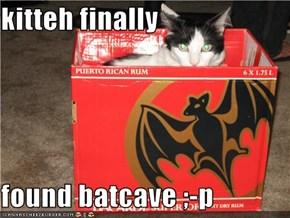 kitteh finally  found batcave ;-p