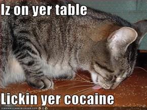 Iz on yer table  Lickin yer cocaine
