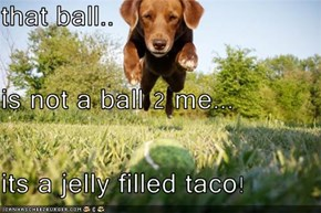 that ball.. is not a ball 2 me... its a jelly filled taco!