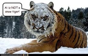 Ai iz NOT a snow tiger!