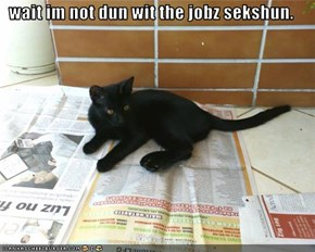wait im not dun wit the jobz sekshun.