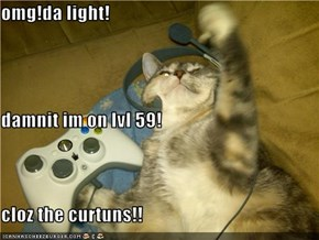 omg!da light! damnit im on lvl 59! cloz the curtuns!!