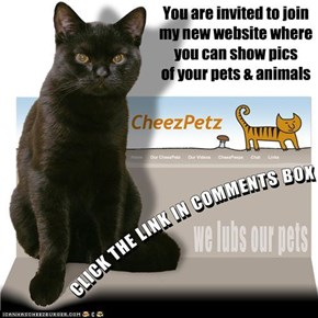 To all my Pet Loving Cheezfrenz . . . . .
