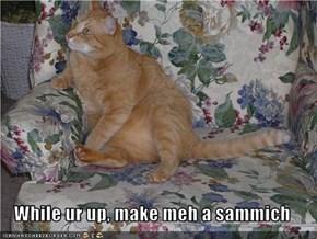 While ur up, make meh a sammich