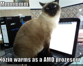 Mmmmmm,   Nozin warms as a AMD prozesorr