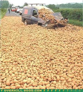 Suddenly Potatoes, Thousands Of Them
